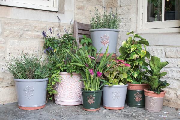 Woodlodge Terracotta & Glazed Pots